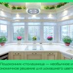 Подоконник-столешница — необычное и эргономичное решение для домашнего цветника