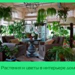 Растения и цветы в интерьере дома