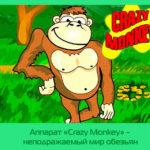 Аппарат «Crazy Monkey» — неподражаемый мир обезьян